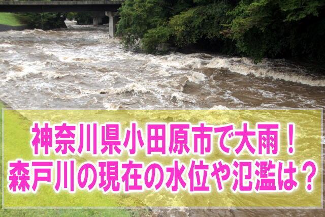 森戸川(神奈川県小田原市)の現在の水位と氾濫状況をライブカメラからリアルタイム確認