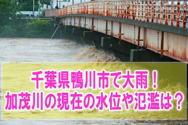 加茂川(千葉県鴨川市)の氾濫場所や現在水位をライブカメラ確認とハザードマップ、避難所