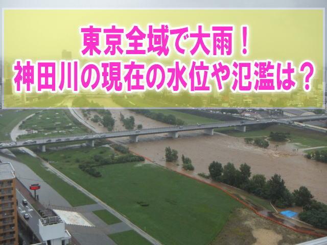 神田川の現在水位や氾濫、浸水状況をライブカメラ確認とハザードマップ、避難所情報