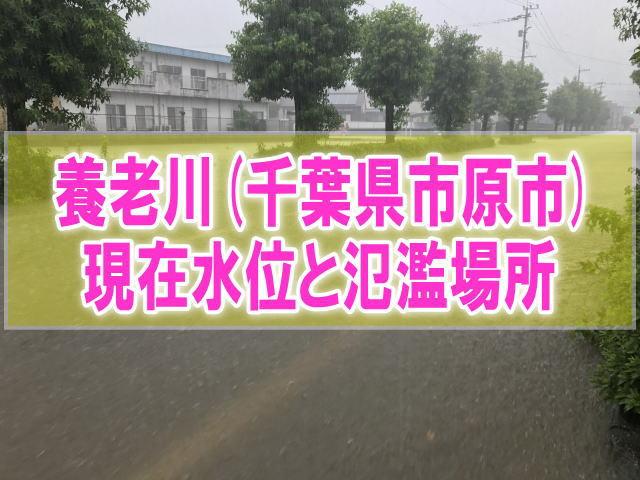 養老川(千葉県市原市)の氾濫場所や現在水位をライブカメラ確認とハザードマップ、避難所