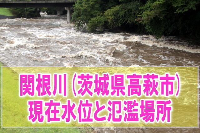 関根川(茨城県高萩市)の氾濫場所や現在水位をライブカメラ確認とハザードマップ、避難所