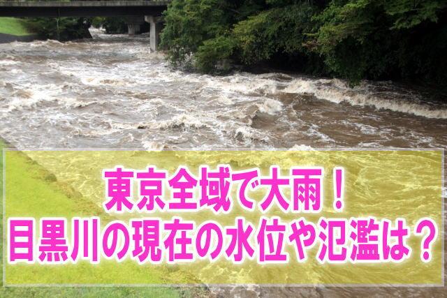 目黒川の現在水位や氾濫、浸水状況をライブカメラ確認とハザードマップ、避難所情報