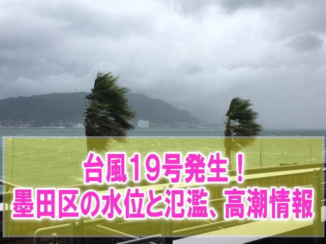 墨田区の現在水位や氾濫状況、高潮被害をライブカメラ確認とハザードマップ情報