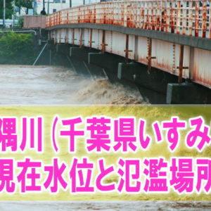 夷隅川(千葉県いすみ市)の氾濫場所や現在水位をライブカメラ確認とハザードマップ、避難所