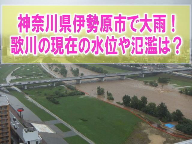 歌川の現在水位や氾濫状況をライブカメラ確認と神奈川県伊勢原市のハザードマップ、避難所