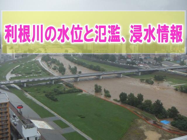 利根川の氾濫場所や現在水位をライブカメラ確認とハザードマップ、避難所情報