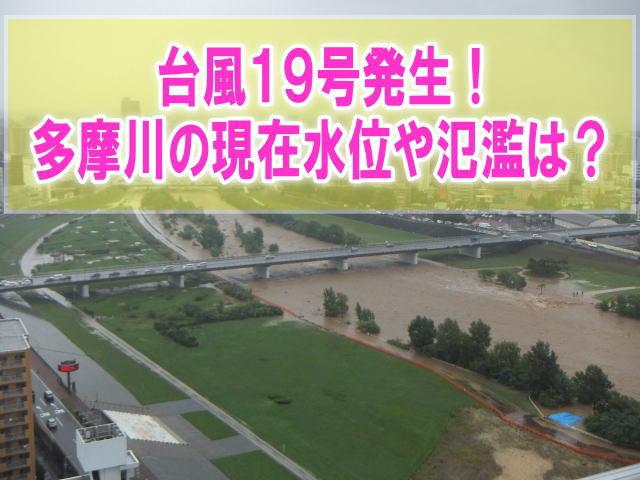 多摩川の現在水位や氾濫、浸水、増水、洪水状況の水害被害をライブカメラ確認