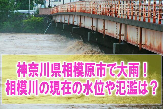相模川の現在水位や氾濫、浸水状況をライブカメラ確認とハザードマップ、避難所情報