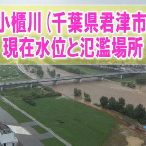 小櫃川(千葉県君津市)の氾濫場所や現在水位をライブカメラ確認とハザードマップ、避難所