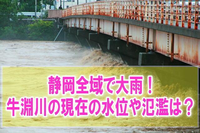 牛淵川の氾濫場所や現在水位をライブカメラ確認と静岡菊川のハザードマップ情報