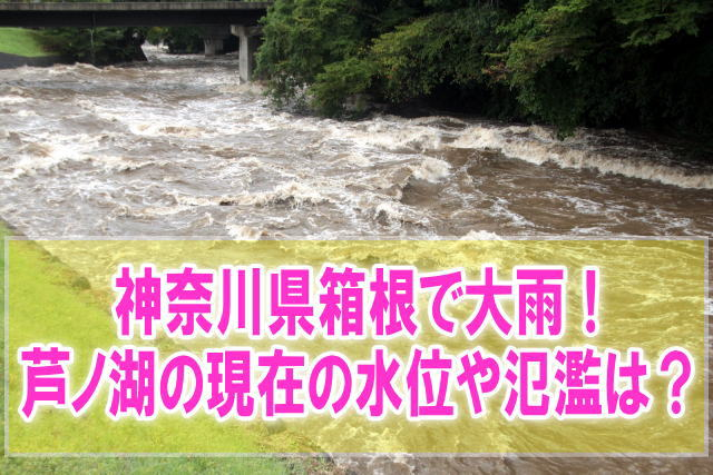 芦ノ湖の現在水位や氾濫状況をライブカメラ確認と箱根のハザードマップ、避難所情報
