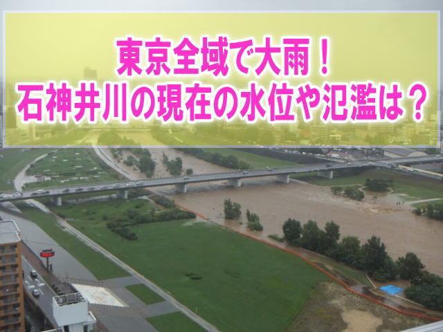 石神井川の氾濫場所や現在水位をライブカメラ確認とハザードマップ、避難所情報