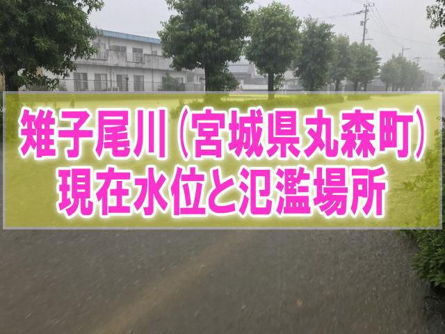 雉子尾川(宮城県丸森町)の氾濫場所や現在水位をライブカメラ確認とハザードマップ、避難所